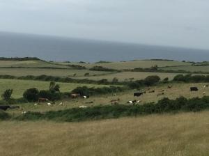 merveilleux paysages de l'ile de Man, on ne s'en lasse pas!