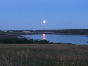 Full Moon on Grand Manan